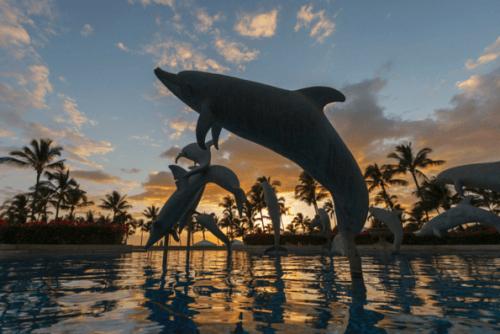 Grand-Wailea-Maui-Hotel-21