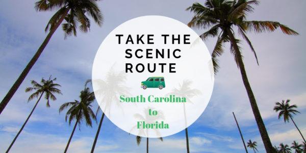 alamo scenic route