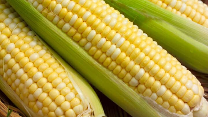 Grilled Basil Butter Corn